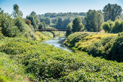 Green River-1